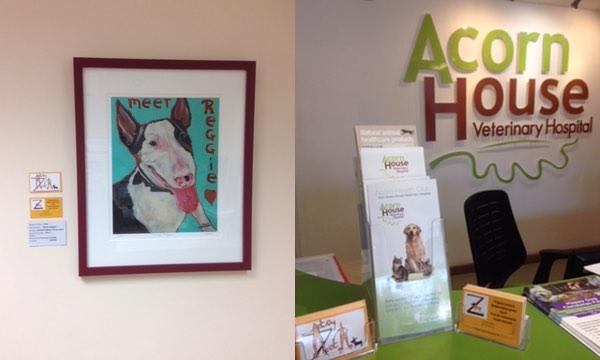 Pet Portraits Art by Zeta at Acorn Hospital